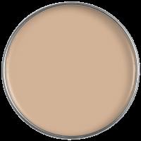 Painting the Past Farbton Nutmeg NC 96